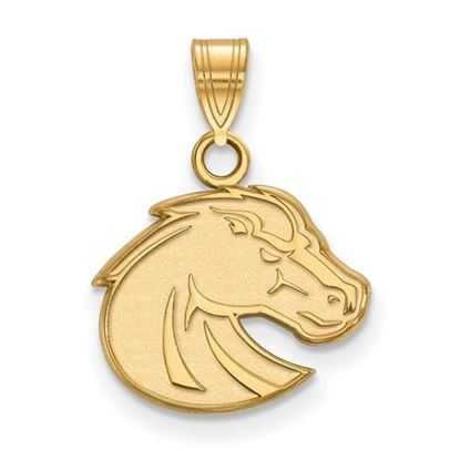Picture of Boise State University Broncos 10k Yellow Gold Small Pendant
