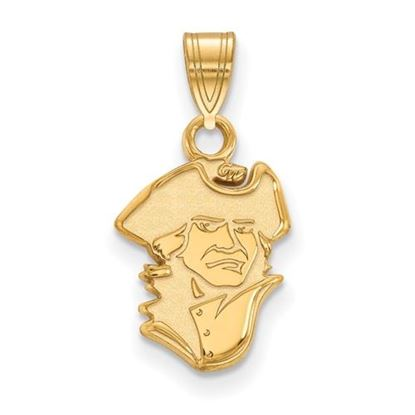 Picture of The George Washington University Colonials Sterling Silver Gold Plated Small Pendant