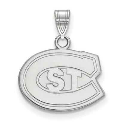 Picture of St. Cloud State University Huskies 10k White Gold Small Pendant