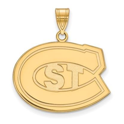 Picture of St. Cloud University Sterling Silver Gold Plated State Large Pendant
