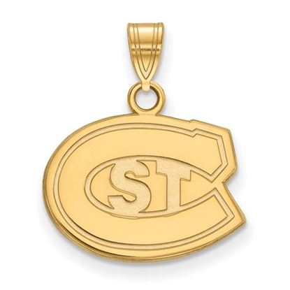 Picture of St. Cloud University Sterling Silver Gold Plated State Small Pendant