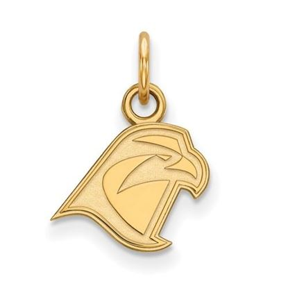 Picture of Bowling Green State University Falcons Sterling Silver Gold Plated Extra Small Pendant