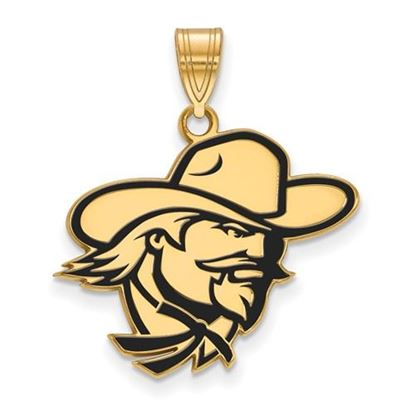 Picture of Eastern Kentucky University Pirates Sterling Silver Gold Plated Large Enameled Pendant