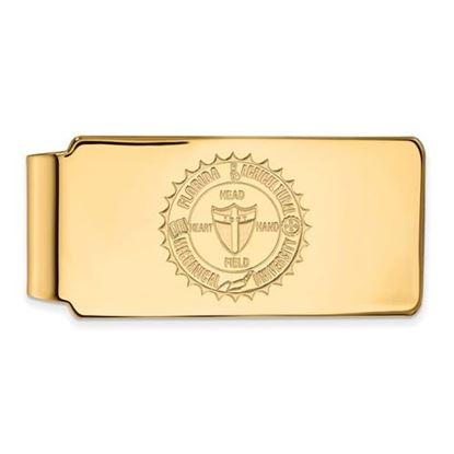 Picture of Florida A&M University Rattlers Sterling Silver Gold Plated Crest Money Clip