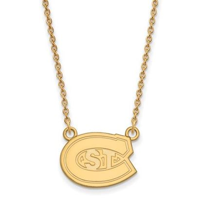 Picture of St. Cloud University Sterling Silver Gold Plated State Small Necklace