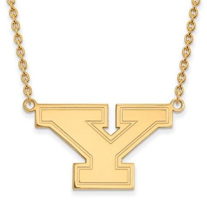 Picture of Youngstown State University Penguins Sterling Silver Gold Plated Large Necklace