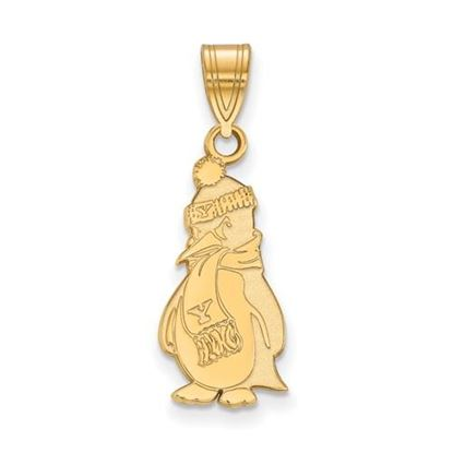 Picture of Youngstown State University Penguins Sterling Silver Gold Plated Large Pendant