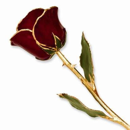 Lacquer Dipped Gold Trimmed Burgundy Rose