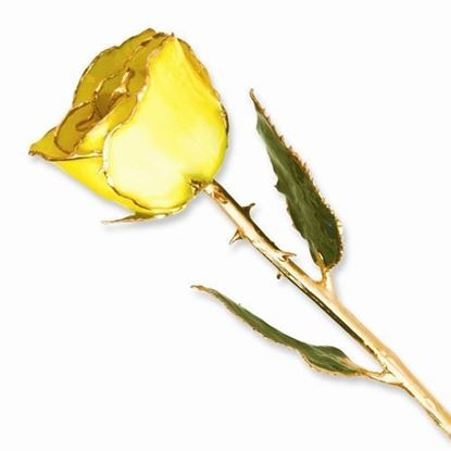 Lacquer Dipped Gold Trimmed Yellow Rose