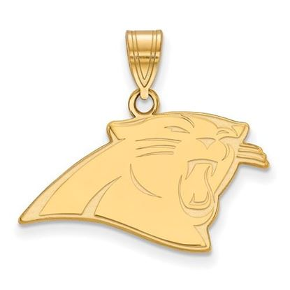 Picture of Carolina Panthers Sterling Silver Gold Plated Medium Pendant