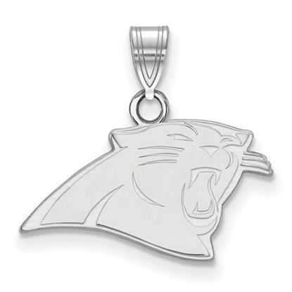 Picture of Carolina Panthers Sterling Silver Small Pendant