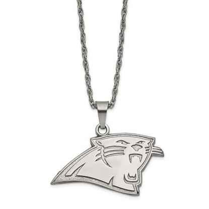 Picture of Carolina Panthers Stainless Steel Pendant on Chain