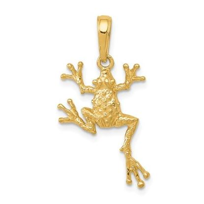 Picture of 14k Yellow Gold Solid Polished Open-Backed Frog Pendant
