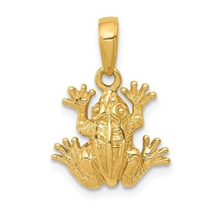 Picture of 14k Yellow Gold 2-D Frog Pendant