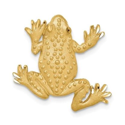 Picture of 14k Yellow Gold Brushed and Diamond-cut Textured Frog Chain Slide