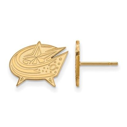Picture of Columbus Blue Jackets® 14k Yellow Gold Small Post Earrings